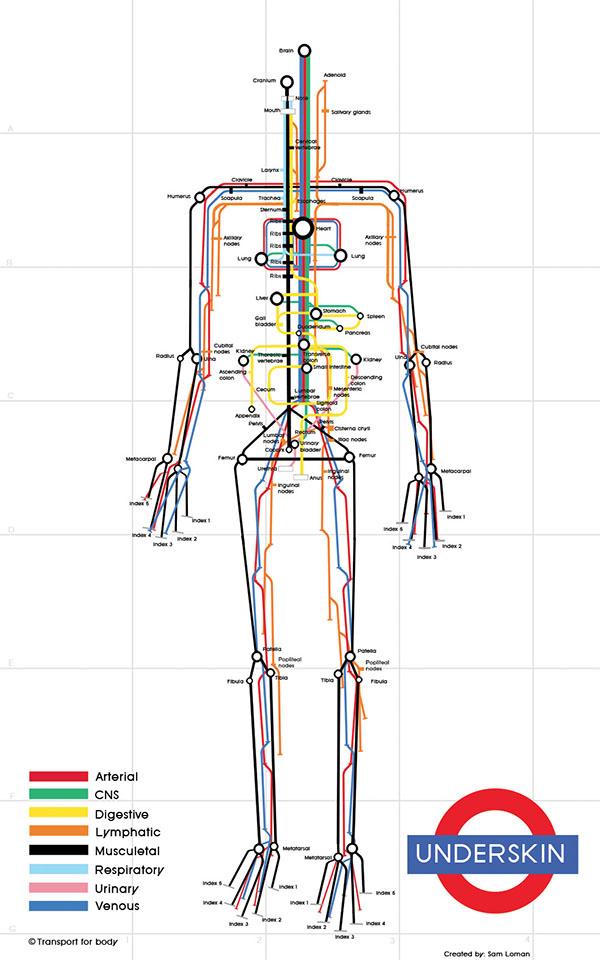 human_subway_map2